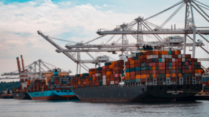 navigating the supply chain